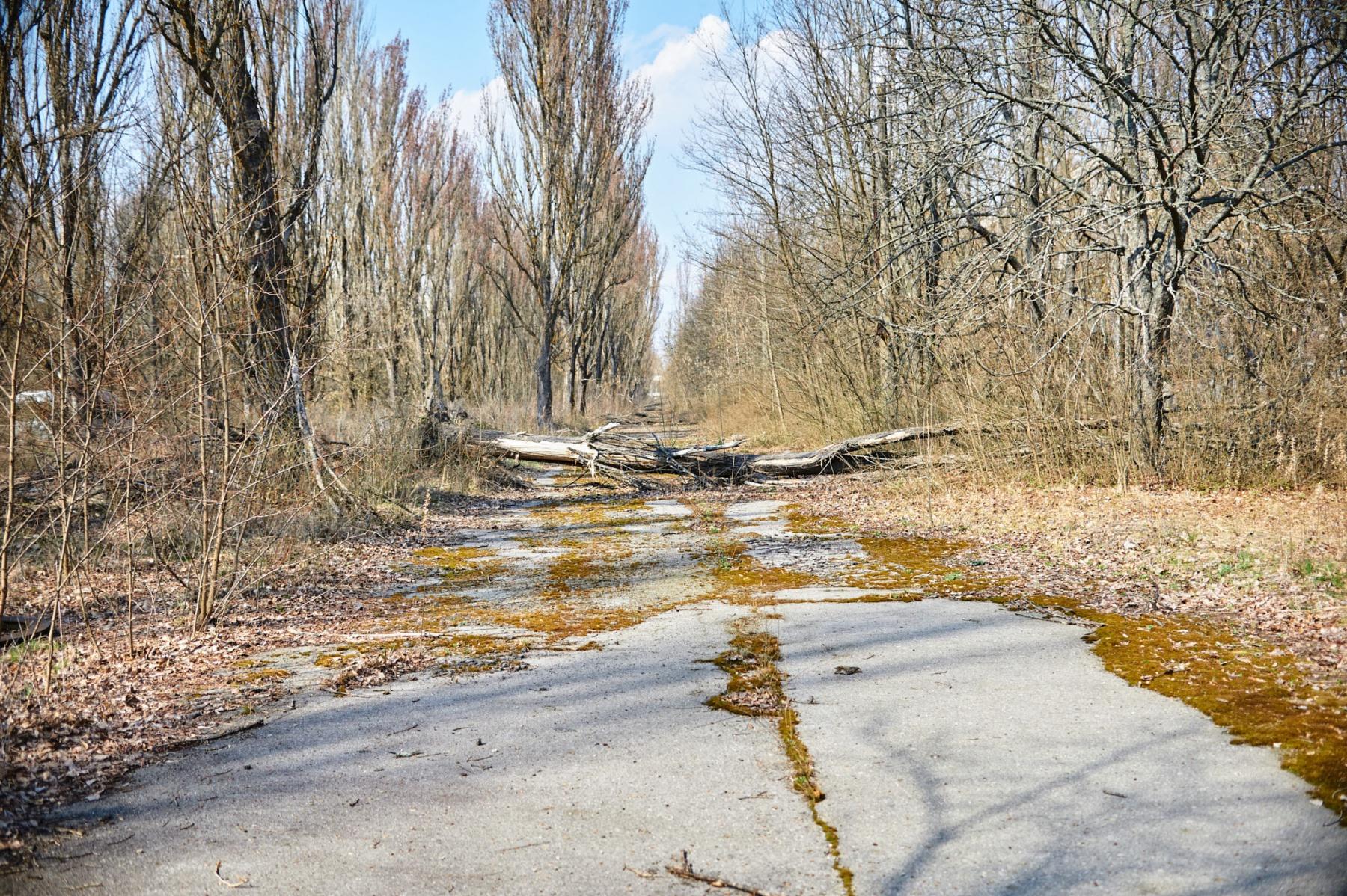 Czarnobyl_p1_002