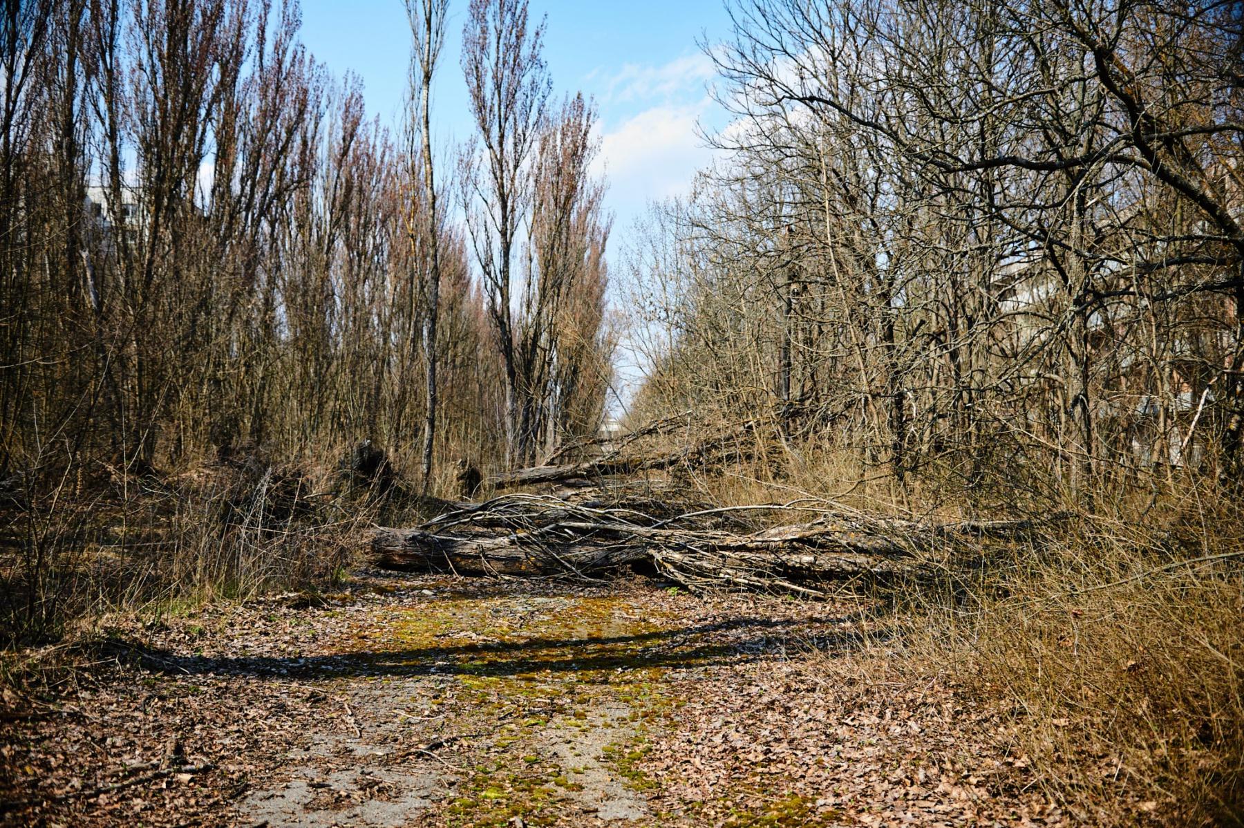 Czarnobyl_p1_004